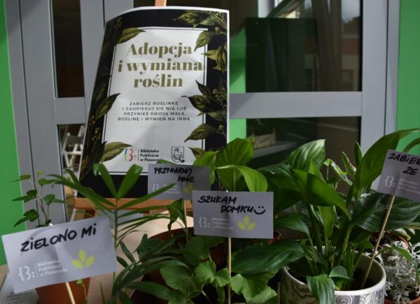 Adopcja roślin
