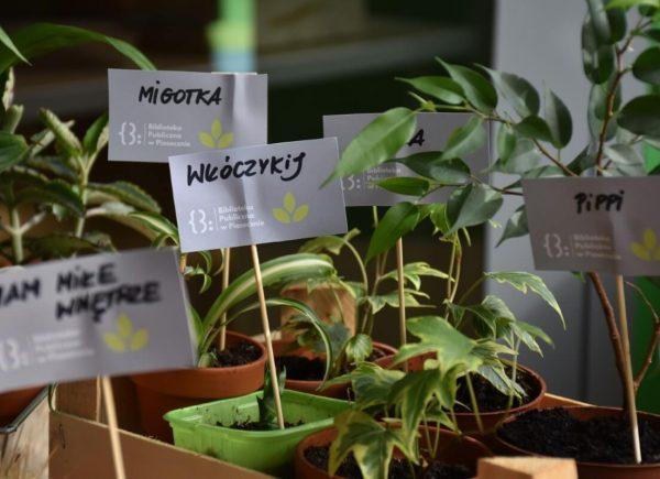 Otwarte Ogrody Zalesie Dolne - wymiana roślin