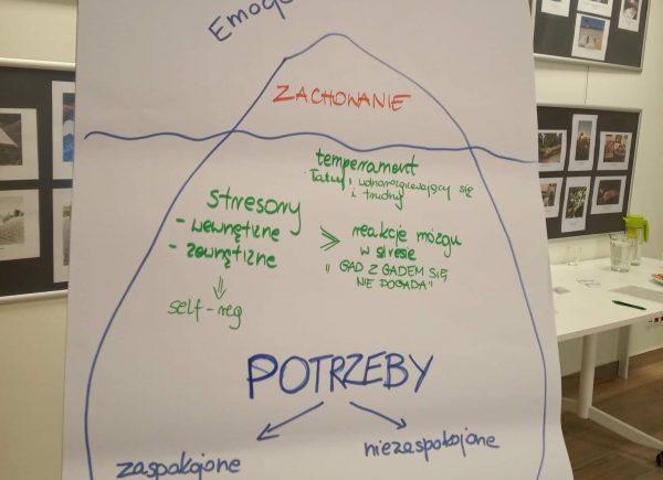 Tablica zzapisanymi podczas warsztatów informacjami
