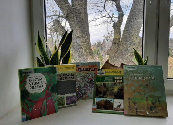 Publikacje natemat drzew ilasów
