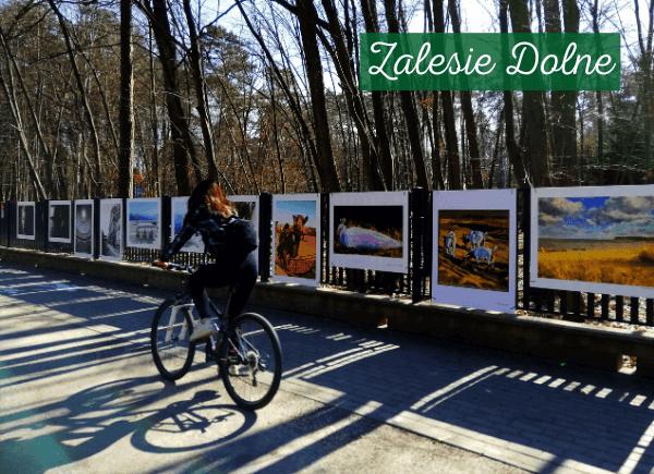 Osoba jedzie na rowerze obok wystawy art love przy bibliotece w Zalesiu Dolnym