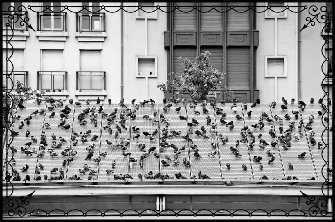 Paryż, miejskie impresje architektoniczne, fot.Piotr Michalski