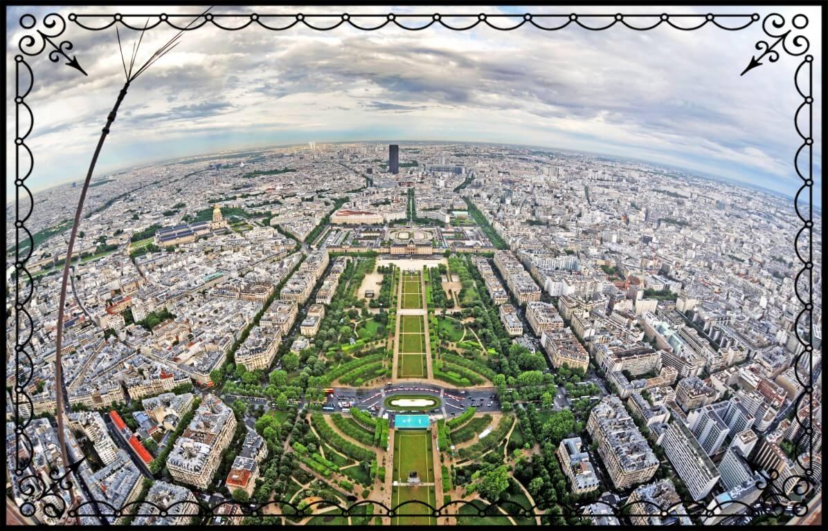 Paryż zwieży, fot.Piotr Michalski