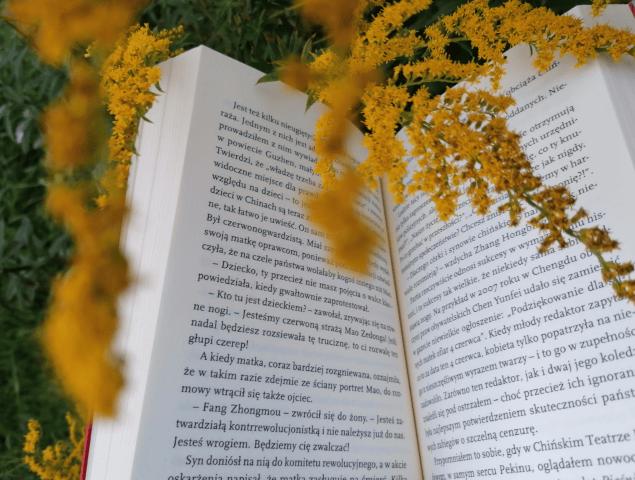Zdjęcie przedstawia książkę. Napierwszym planie widać gałązki zkwiatami.